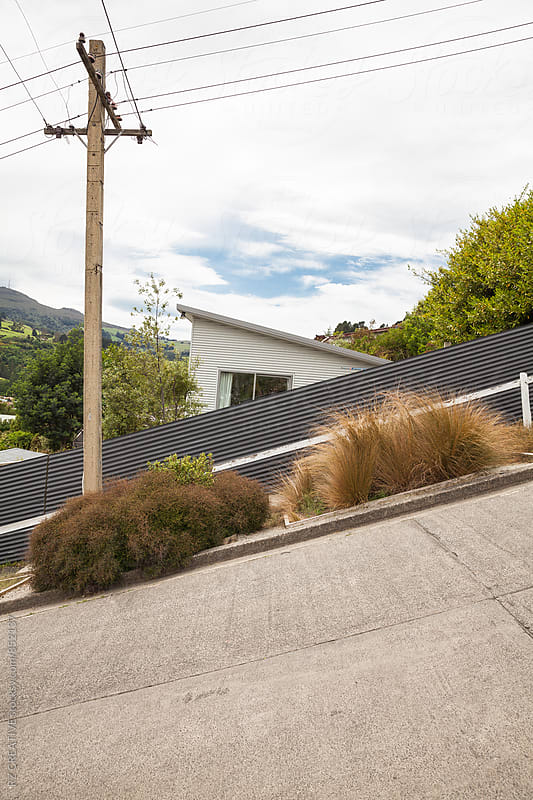 The steepest street in the world, Dunedin, New Zealand. by Robert Zaleski for Stocksy United