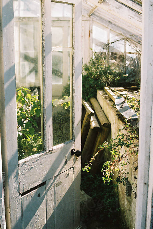 An old greenhouse by Helen Rushbrook for Stocksy United