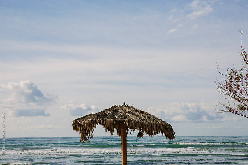 Beach hut with ocean and surfing in the background by Curtis Kim for Stocksy United