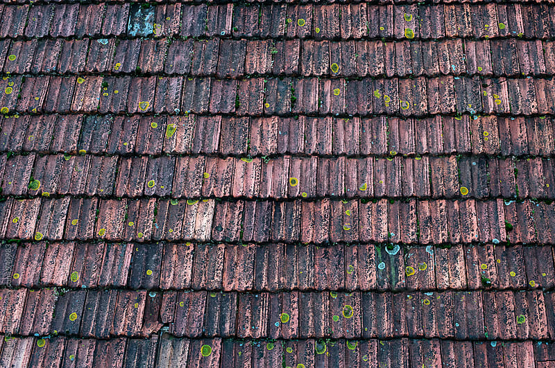 Beautiful Old Roof in Oporto by Bisual Studio for Stocksy United