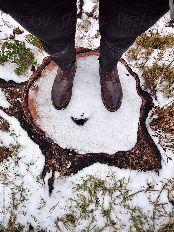Stumped in the Snow by ian pratt for Stocksy United