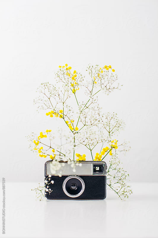Old camera and flowers. Springtime. by BONNINSTUDIO for Stocksy United