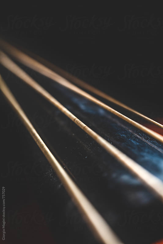 Macro Closeup of the Strings of a Double Bass by Giorgio Magini for Stocksy United