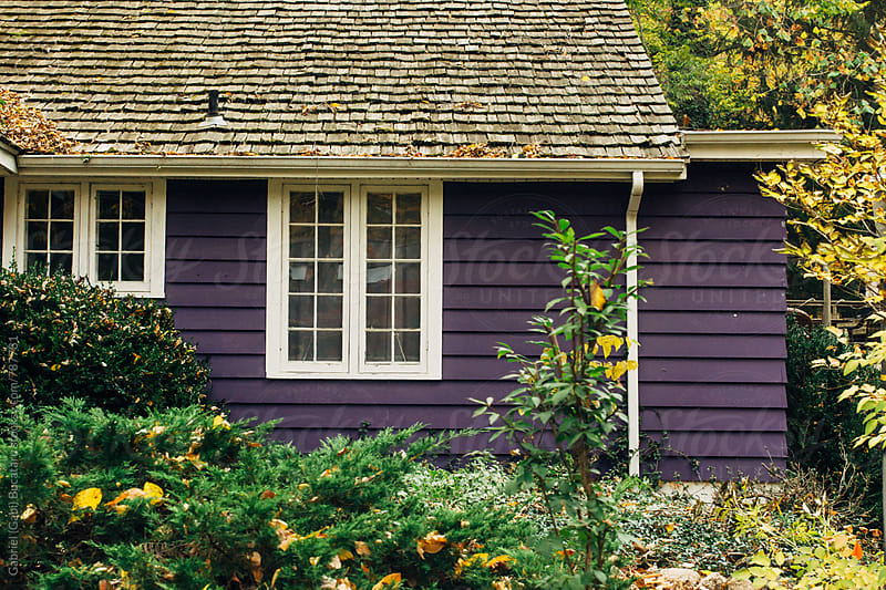 Purple siding on a house by Gabriel (Gabi) Bucataru for Stocksy United