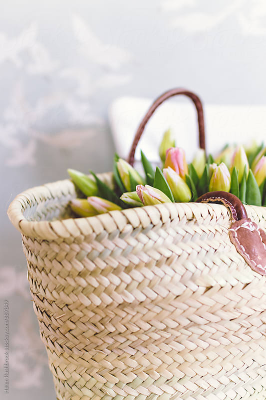 Tulips in a french market basket by Helen Rushbrook for Stocksy United