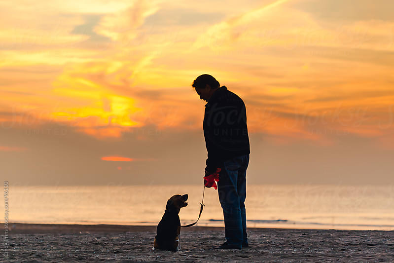 The silhouettes of a man and his dog on the beach looking at each other  by Cindy Prins for Stocksy United