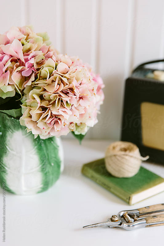 Still life vignette featuring faded pink hydrangea blooms in a vintage jug.
