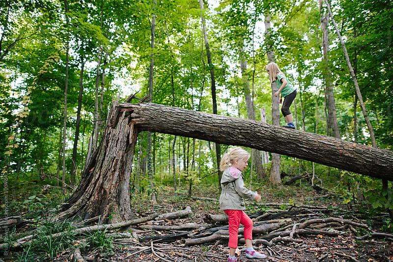 two girls exploring nature by Brian Powell for Stocksy United