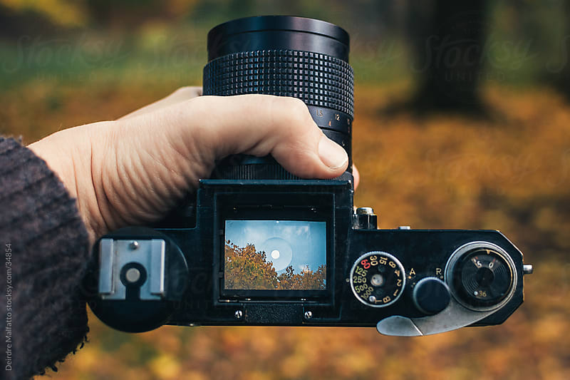 hand holding camera with viewfinder in autumn by Deirdre Malfatto for Stocksy United