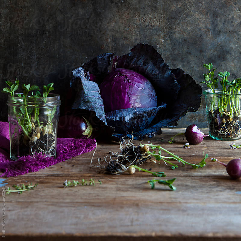 Sprouting pea shoots with cabbage, radish and aubergine  by Nadine Greeff for Stocksy United