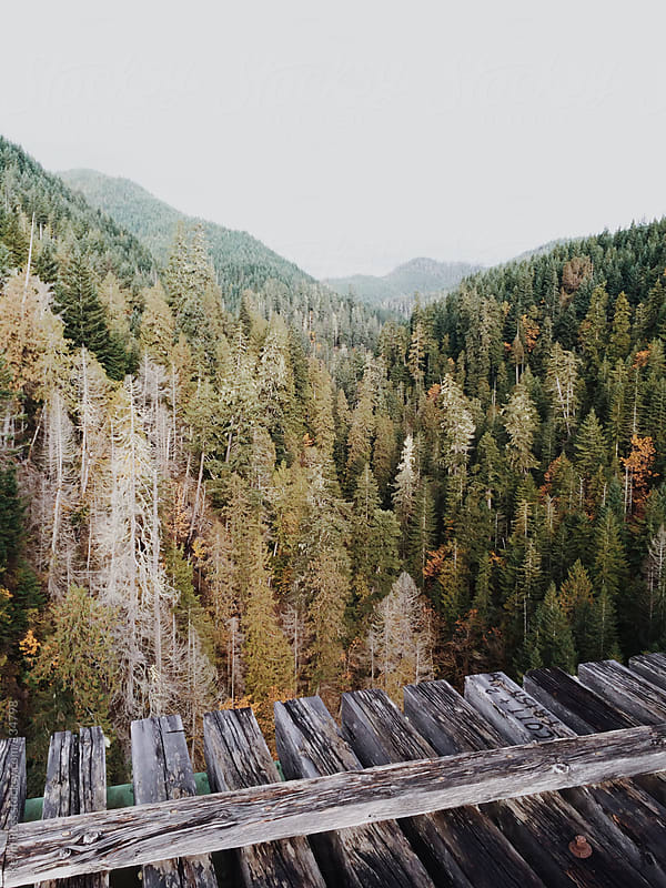 Train Trestle Over Mountain Canyon by Kevin Russ for Stocksy United
