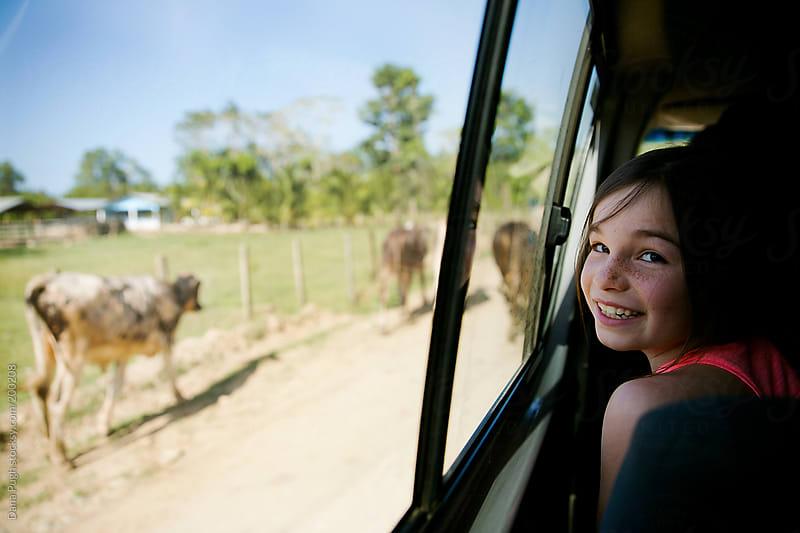 Look mom-cows! by Dana Pugh for Stocksy United