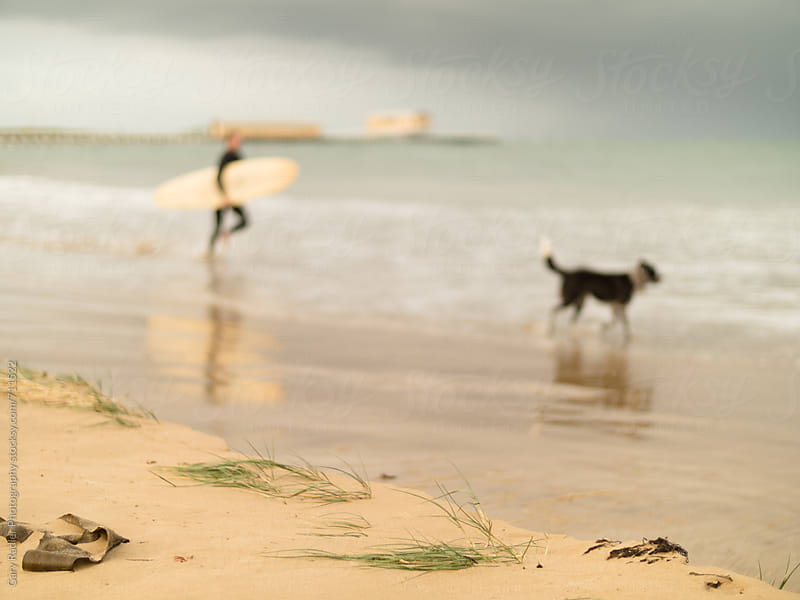 Surfer and his Dog in Queenscliff by Gary Radler Photography for Stocksy United