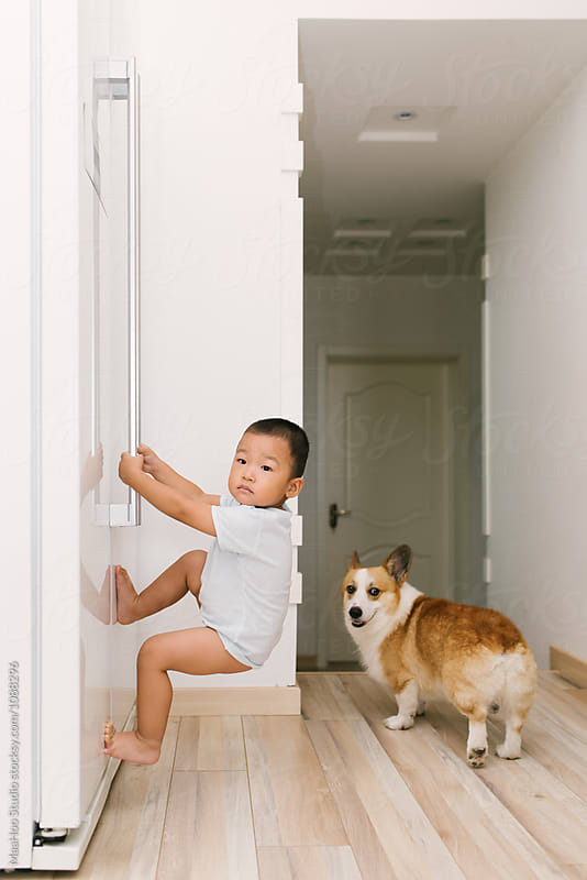 Toddler boy hanging on to door of the fridge by Maa Hoo for Stocksy United
