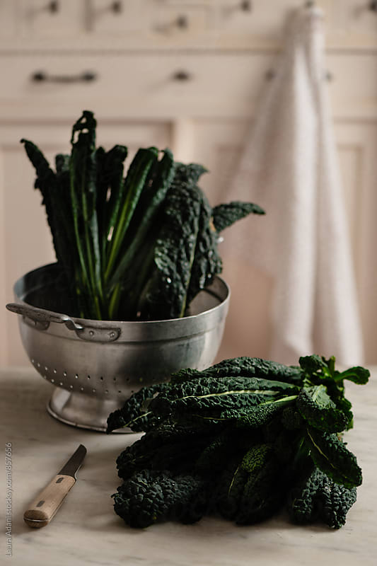 Cavolo nero or Black cabbage by Laura Adani for Stocksy United