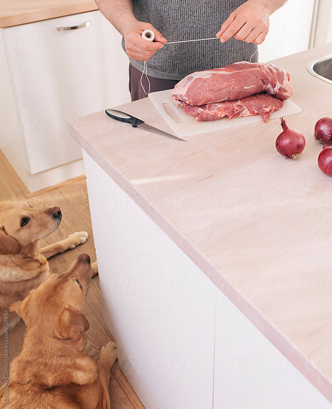 Hungry dogs staring at uncooked rolled roast on the kitchen counter by Elisabeth Coelfen for Stocksy United