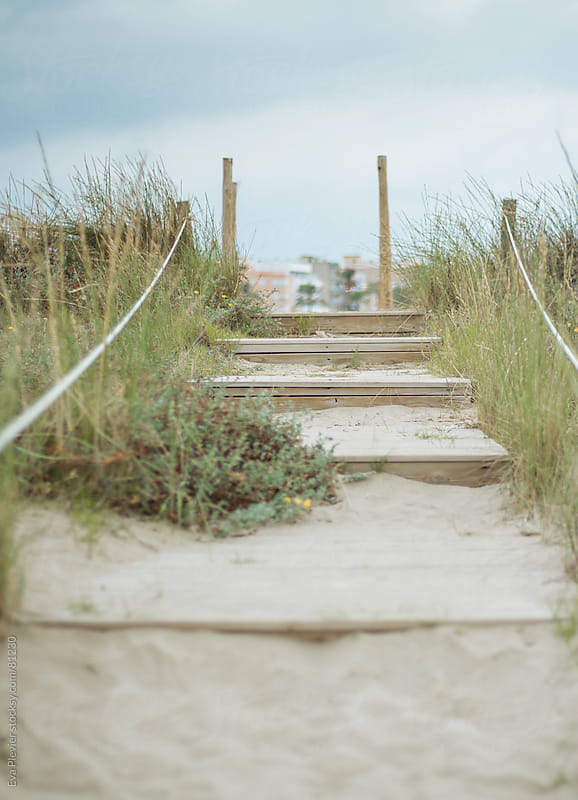 Wooden stairs trough the beach by Eva Plevier for Stocksy United