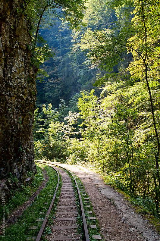 Old abandoned railroad by Svetlana Shchemeleva for Stocksy United