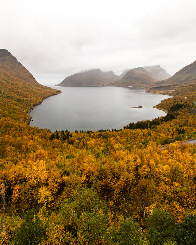 A fjord bottom on a cloudy fall day by Jonatan Hedberg for Stocksy United