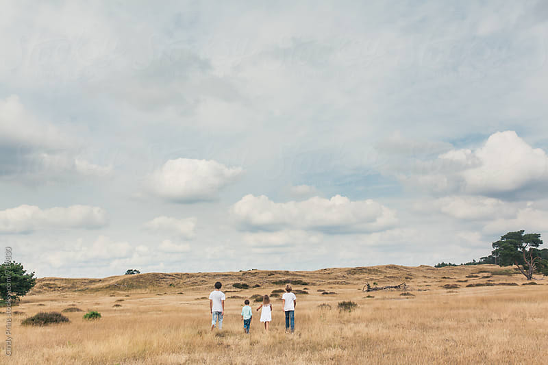 Back view of four kids walking in a golden field on a cloudy summer day by Cindy Prins for Stocksy United