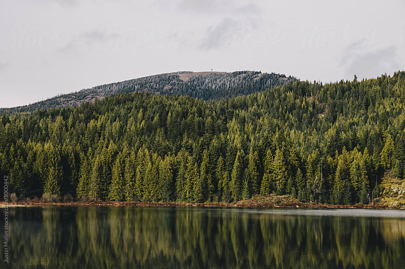 Lake with mountain and fire lookout in the background by Justin Mullet for Stocksy United