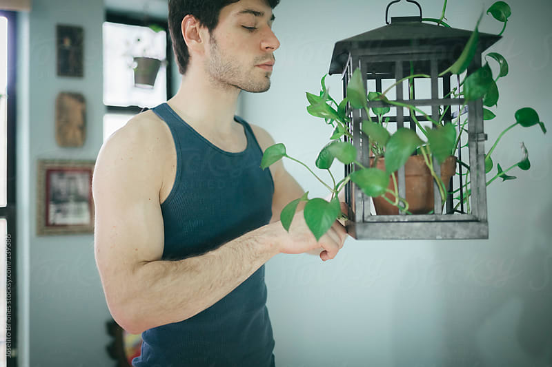 Man Watering and Taking Care of Indoor Hanging Plant at Home by Joselito Briones for Stocksy United