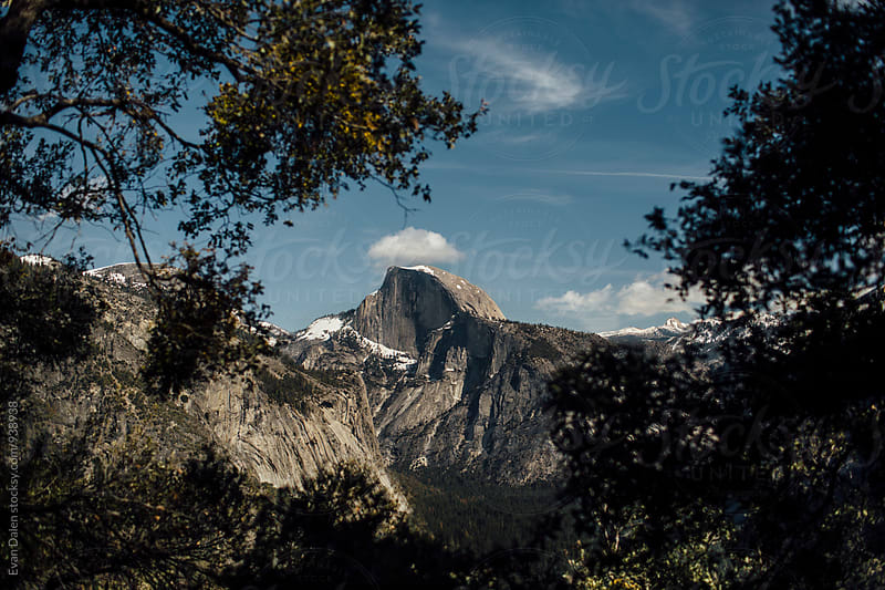Yosemite National Park Through Trees by Evan Dalen for Stocksy United