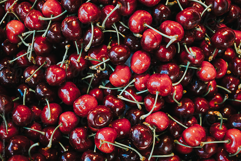 cherries by Thais Ramos Varela for Stocksy United