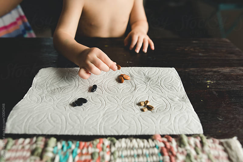 Little boy sorting seeds  by Courtney Rust for Stocksy United