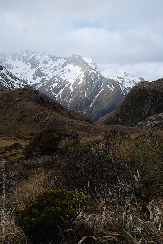 The wild untamed mountains of New Zealand by Maximilian Guy McNair MacEwan for Stocksy United
