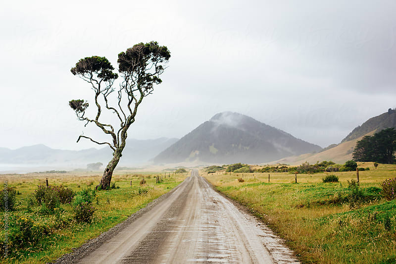 Endless road in New Zealand by Martí Sans for Stocksy United