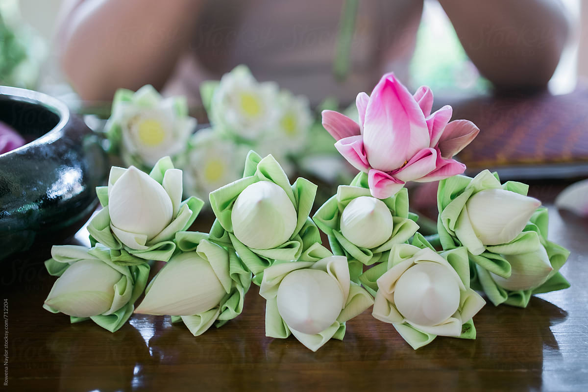 Traditional Folding Of Lotus Flowers As Offering At Buddhist Temples