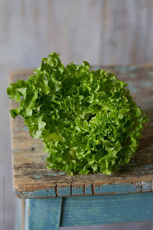 Batavia lettuce by Noemi Hauser for Stocksy United