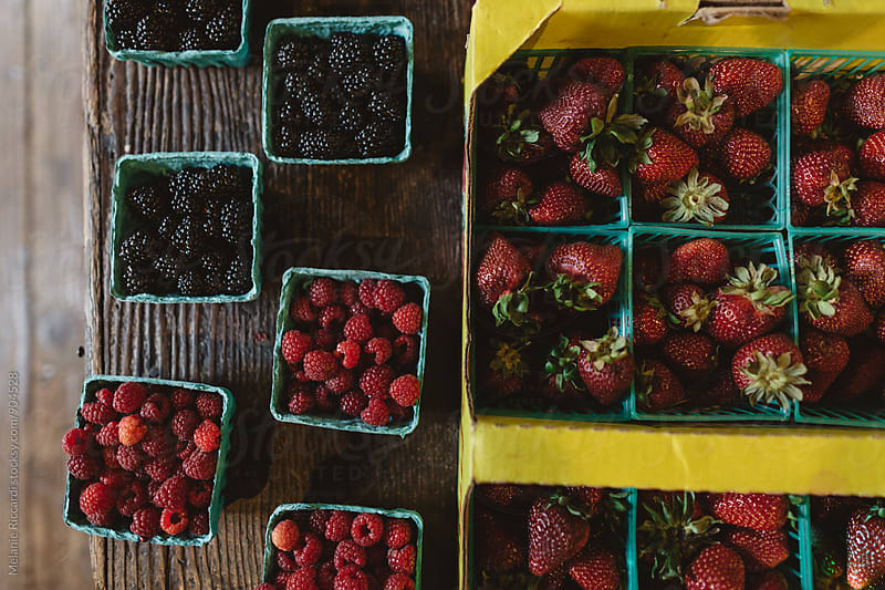 Fresh Berries from the farm by Melanie Riccardi for Stocksy United