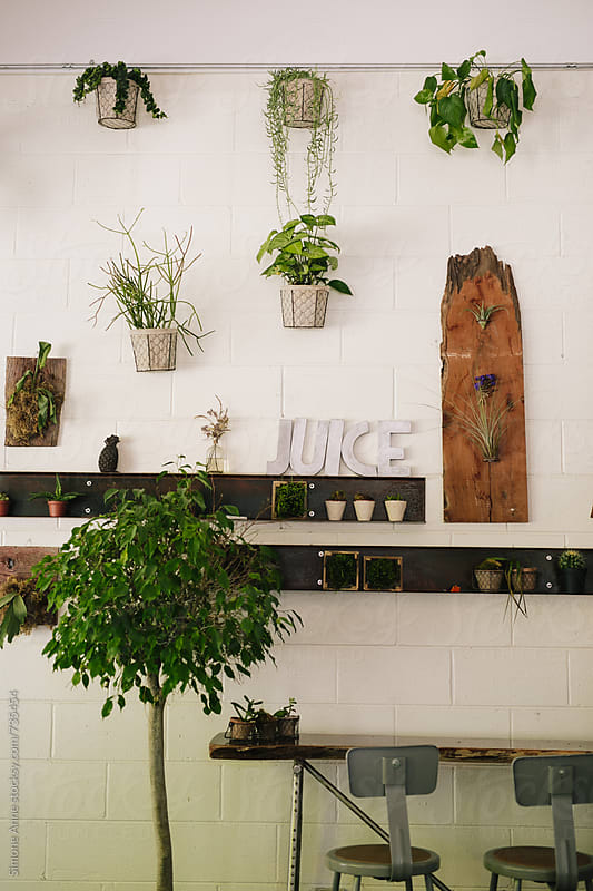 JUICE and wall by Simone Anne for Stocksy United