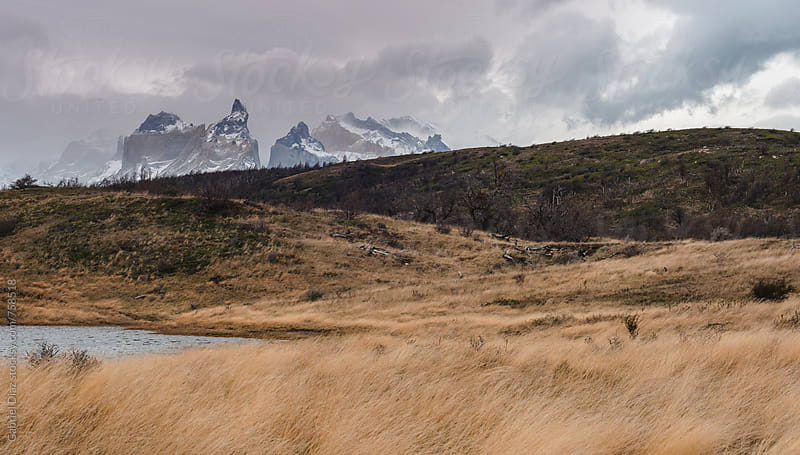 Beautiful landscape in Torres del Paine National Park. Chile by Gabriel Diaz for Stocksy United