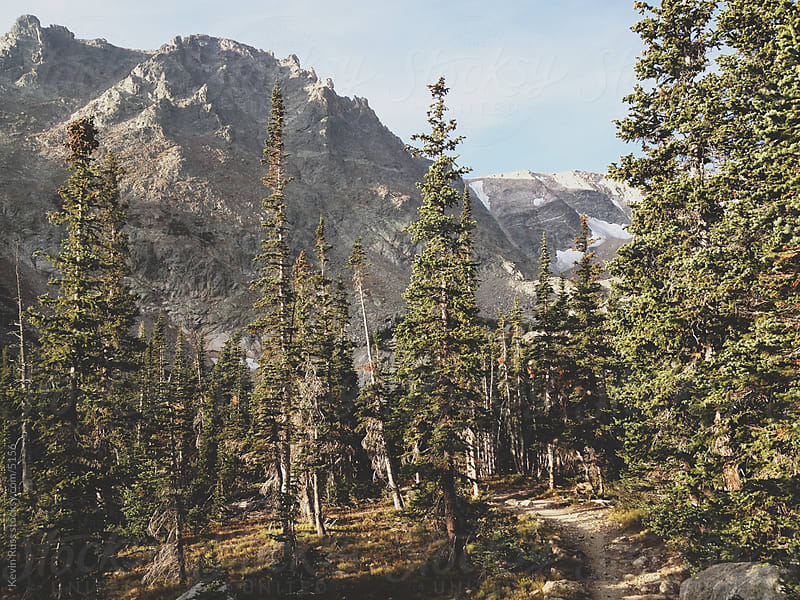 Forest Rocky Mountain Trail by Kevin Russ for Stocksy United
