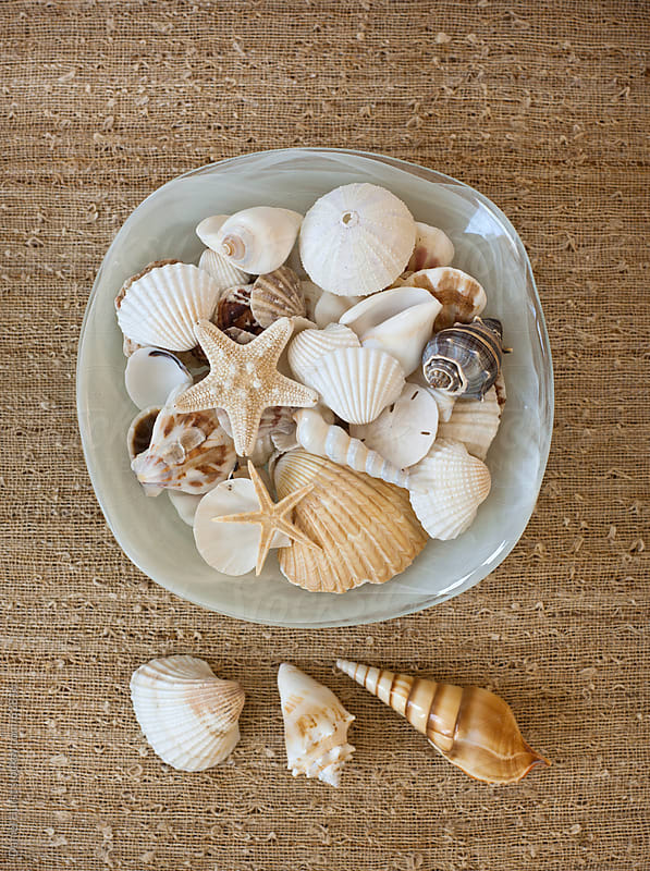 Bowl of sea shells by Daniel Hurst for Stocksy United