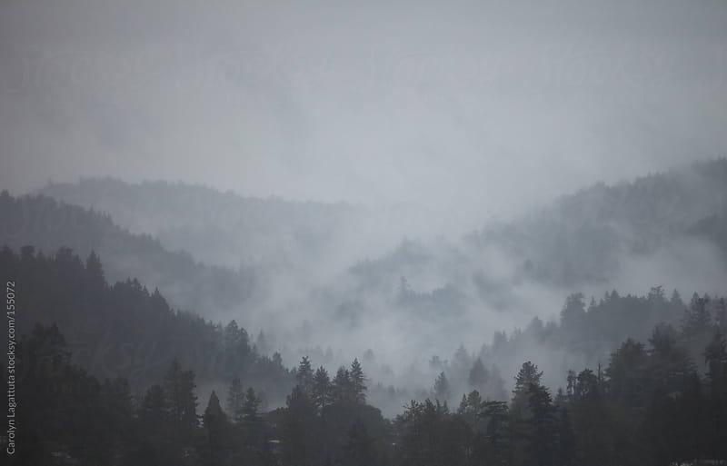 Fog nestled in the mountains on a dark, rainy day by Carolyn Lagattuta for Stocksy United