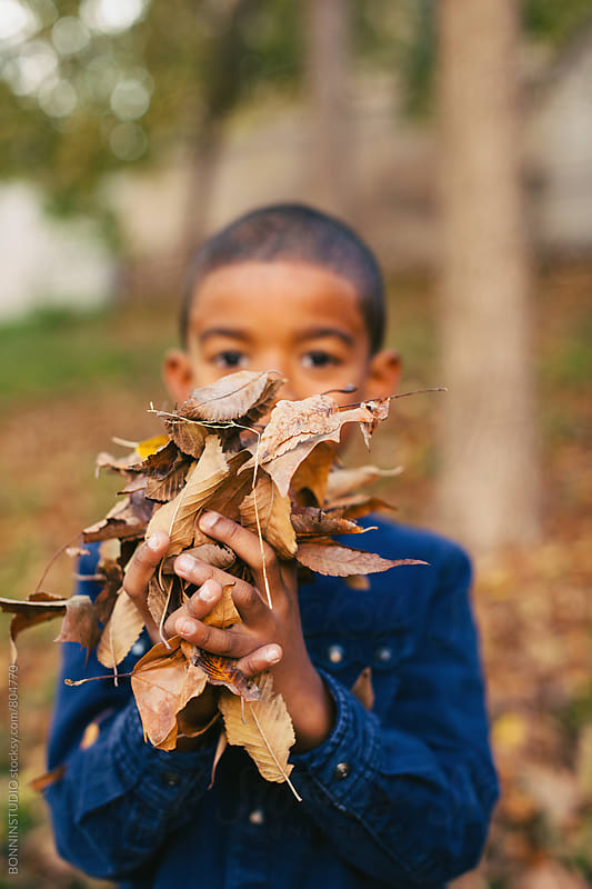 Portrait of a kid holding autumn leaves in the park. by BONNINSTUDIO for Stocksy United