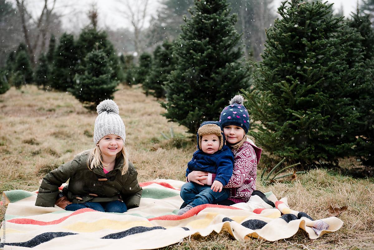Portrait Of Little Kids In Big Woolly Hats In Christmas Tree Farm By Lea Jones Christmas Family Stocksy United