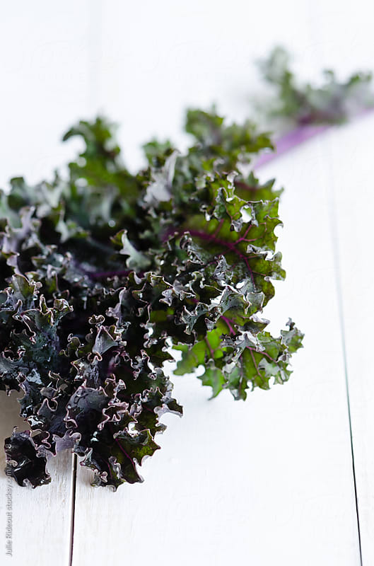 Purple Kale by Julie Rideout for Stocksy United
