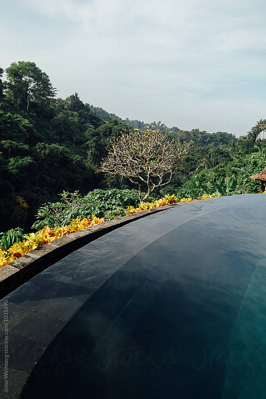Infinity Pool by Jesse Weinberg for Stocksy United