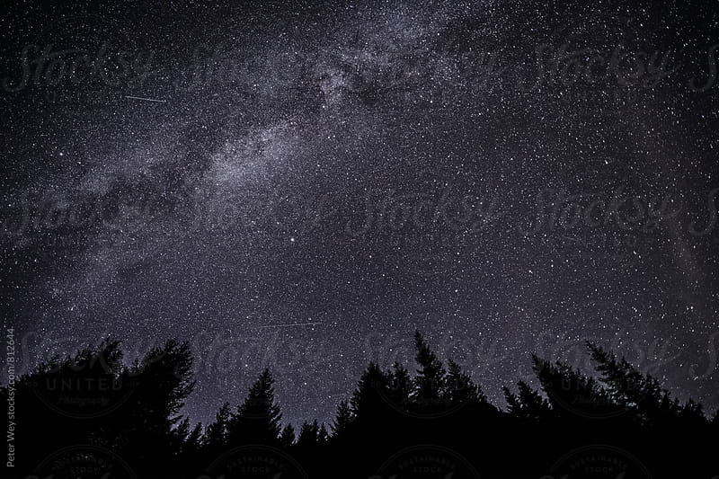 Night sky  by Peter Wey for Stocksy United