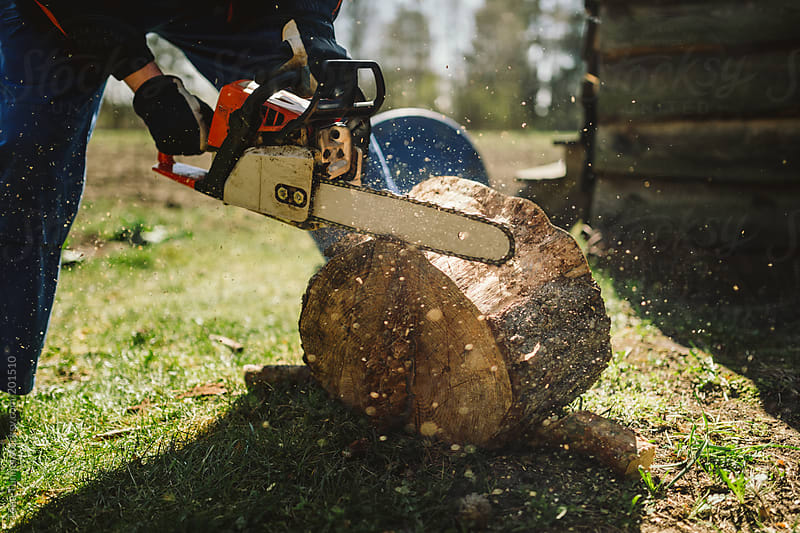Using a chainsaw on a stump. by Tõnu Tunnel for Stocksy United