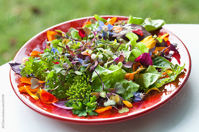 Summer Salad by Jill Chen for Stocksy United