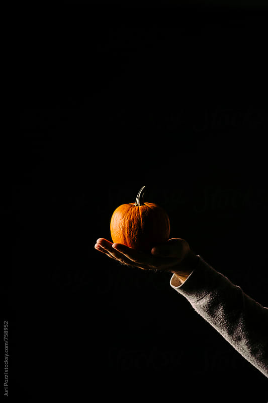 a small and cute orange pumpkin by Juri Pozzi for Stocksy United