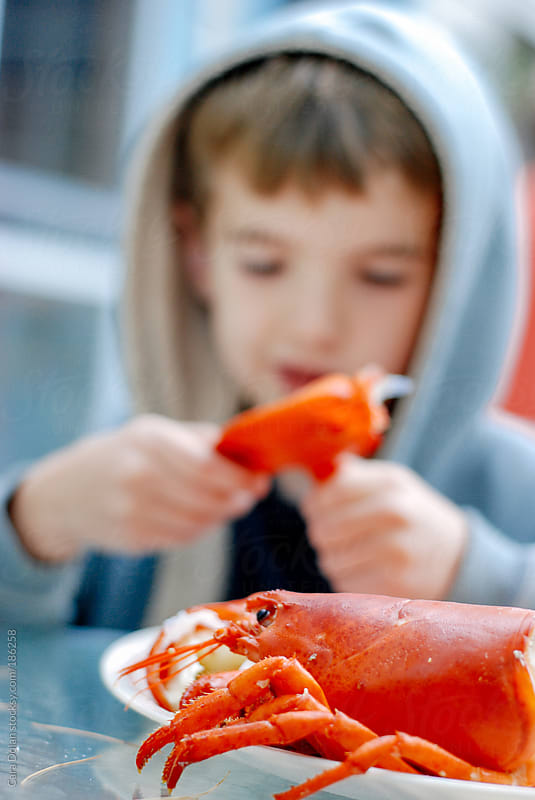 Child tries to figure out how to eat a lobster by Cara Dolan for Stocksy United