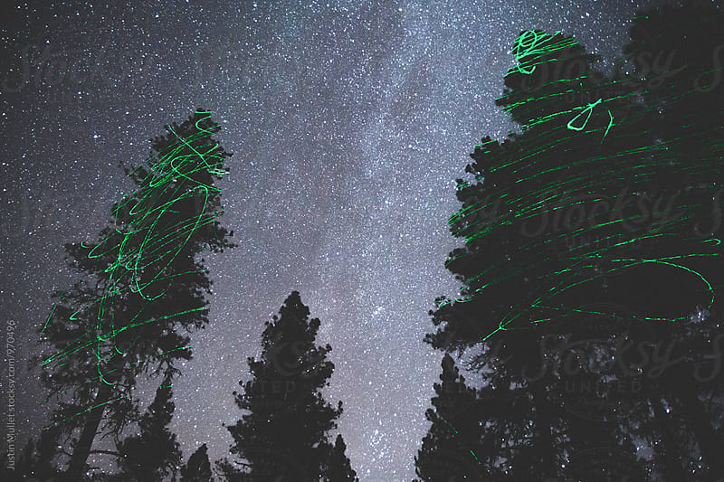 Green neon laser painted on trees at night.  by Justin Mullet for Stocksy United