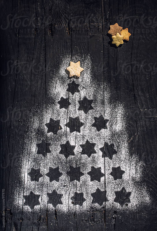 Star Christmas Tree by Lumina for Stocksy United